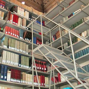 Scaffali in biblioteca